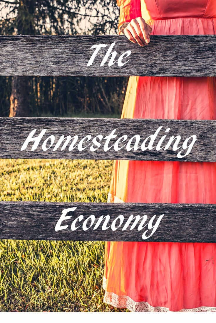 Your homesteading economy is not going to look exactly like mine, but have you ever thought about what you have – resources and skills – to help you live without a regular job? Many people talk about preparing for