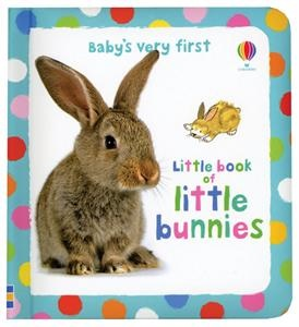 A gorgeous book full of pictures of cute little bunnies cuddling, nibbling, sniffing, hopping and washing.