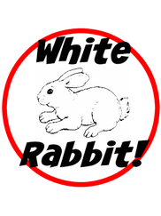 White Rabbit 1st of the Month Linky Party