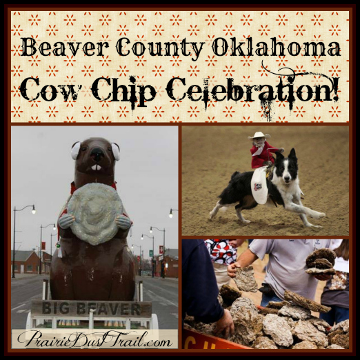 What do the Dusty Dudes of the prairie do for fun? We throw cow chips as a competition sport. (Yes, anything can be a competition sport...)