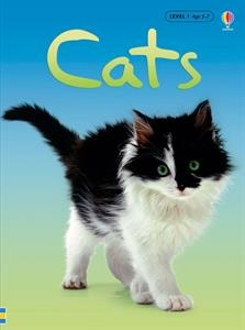 Why do cats purr? How do cats say hello? Which cat has no tail? In this book you'll find the answers and lots more about the curious world of cats.
