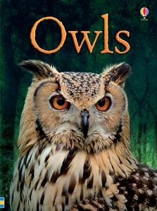 A fascinating introduction to owls, including nesting, hunting, living at night and camouflage. How do owls find their way in the dark? What do they eat? What is a baby owl called? Find out the answers to these questions and many more. Simple explanations are brought to life with step-by-step illustrations and full color photographs. Includes a full glossary and internet links to exciting websites to find out more. (6yr & up)