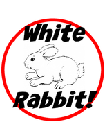 White Rabbit 1st of the month Linky Party!