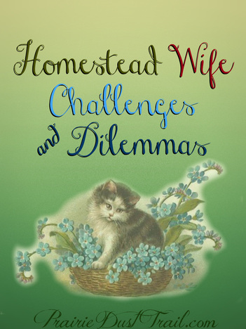 Homestead Wife Challenges and Dilemmas