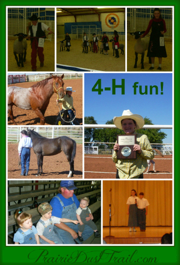 Our family is involved in very few organized activities. Even our involvement in 4-H is very limited.