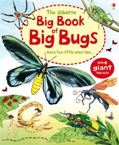From an amazing stick insect longer than your arm to gigantic spiders as big as a dinner plate, this book's huge fold-out pages let readers discover how big some of the biggest bugs in the world really are.