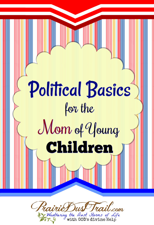As a busy mom, I don't want to get bogged down with all the negativity. At the same time, I hate being blindsided by some legislation I didn't realize was even being discussed. It's hard to balance so many things, who wants to take time to pay attention to politics?